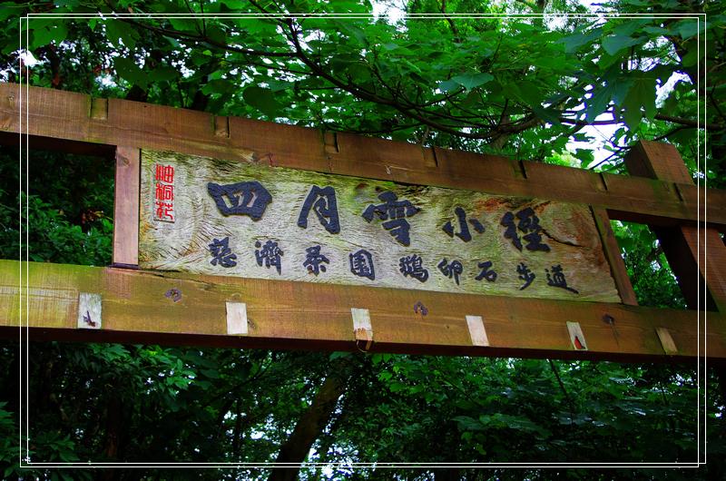 5月17苗栗~臺中一共跑了355. 7公里