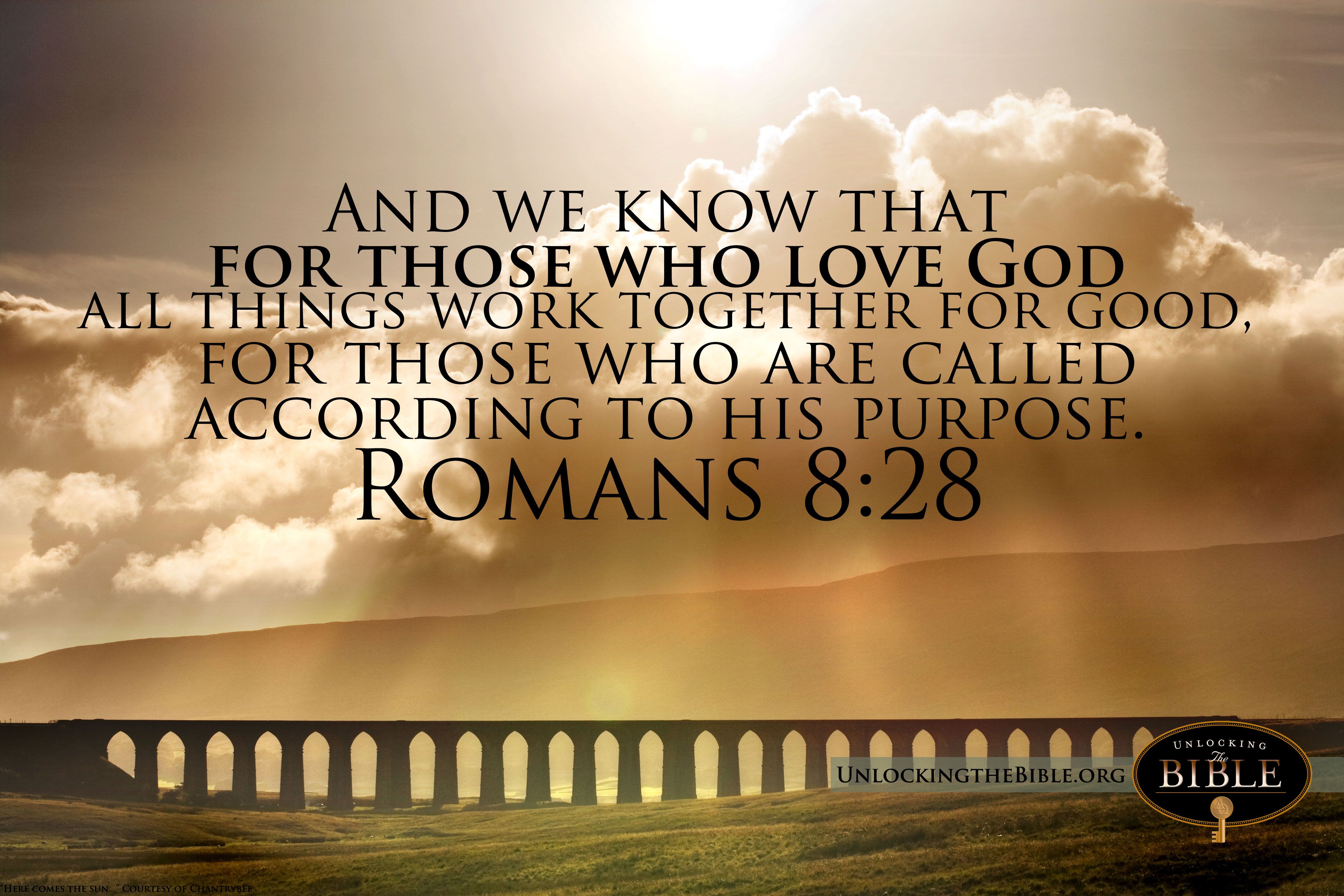 live life to the fullest my favorite bible verse romans 8 28
