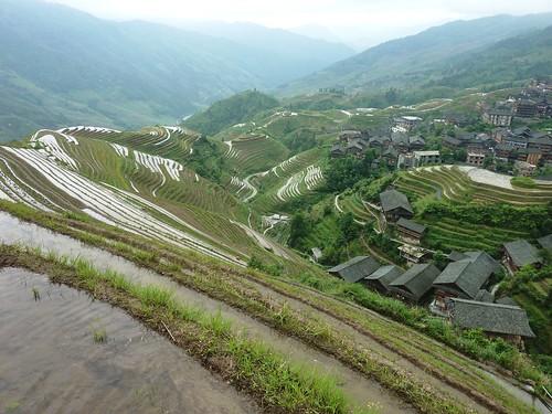 C-Guangxi-Pingan-Terrasse des 9 dragons (21)