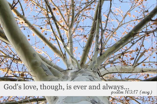 Psalm 10317