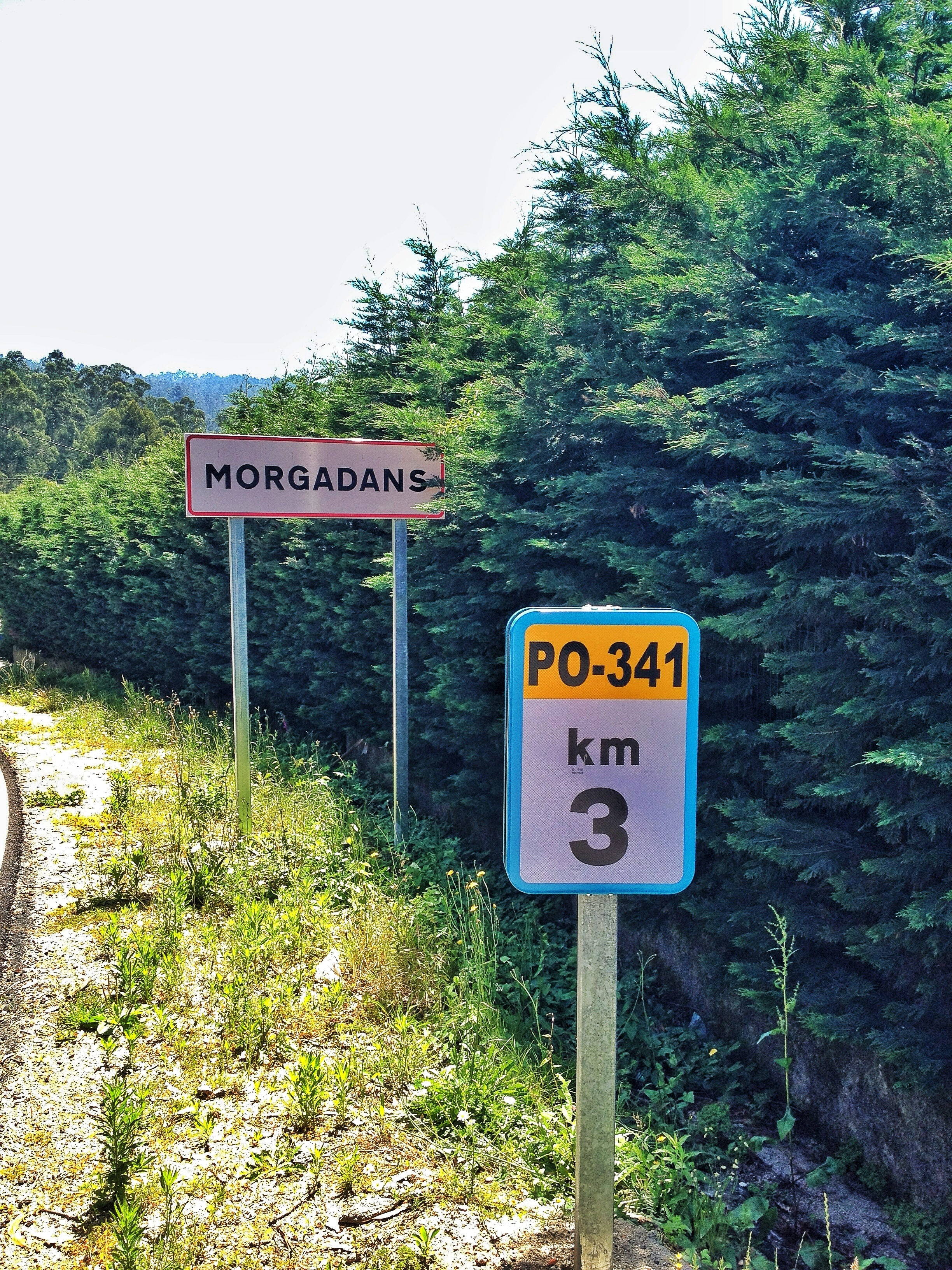 Km 3 PO-341