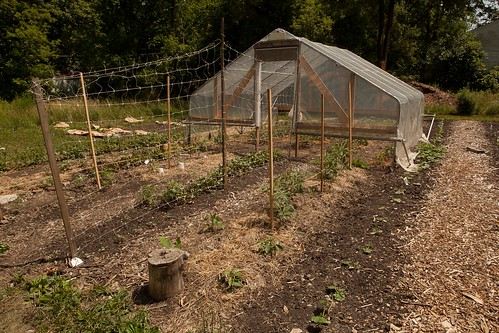 A hoop house and garden on the Farmway.