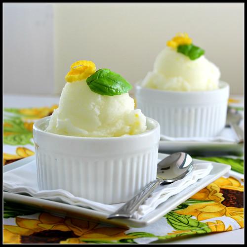 Lemon Basil Sorbet