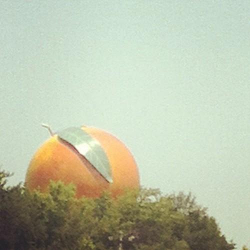 Peach on the horizon