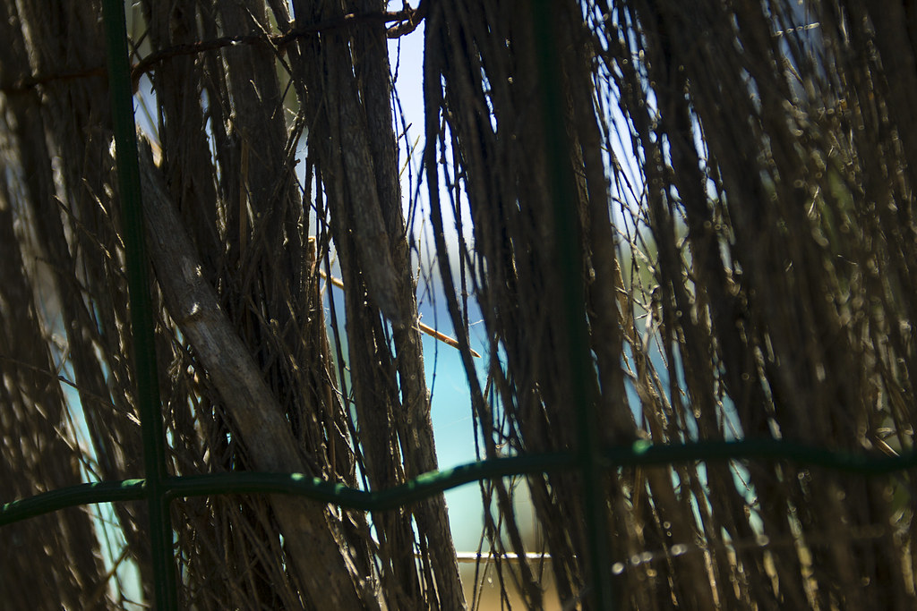 Secret in Cala D'Or - Mallorca