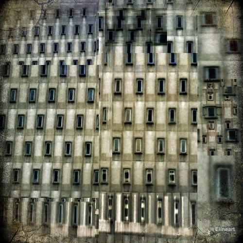 2:365 Windows by elineart
