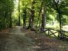 Castello di Aglié - Il parco