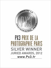 Px3 2012 Silver