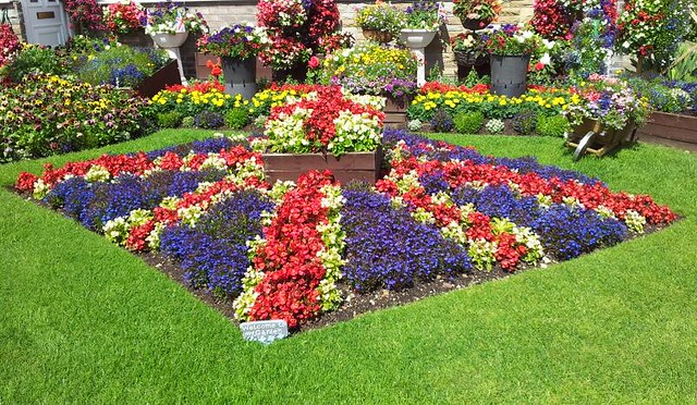 Garden Design Huddersfield : Red white and blue featured in the huddersfield examiner