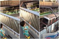 代官山駅で電車を見るとらちゃん (2012/7/29)