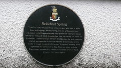 Photo of Picklefoot Spring black plaque
