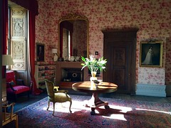 Morning in the Drawing Room