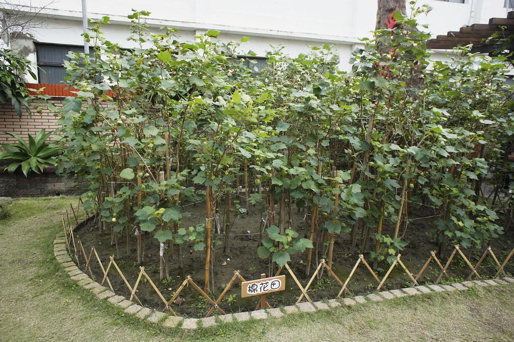 竹山彩棉居寢飾文化館 (2)