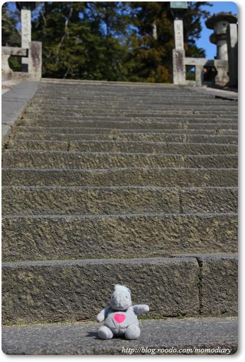 波波爬階梯