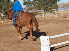 K and Calliope, jumping