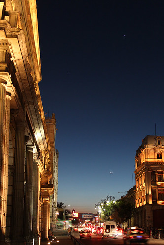 Variedad nocturna by laap mx
