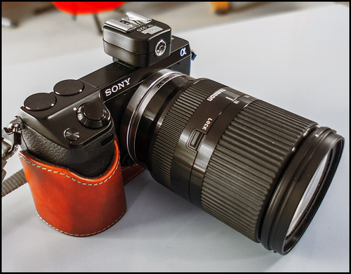 Sony NEX-7 Tamron 18-200mm zoom lens