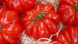 Tomates rouges, plus près