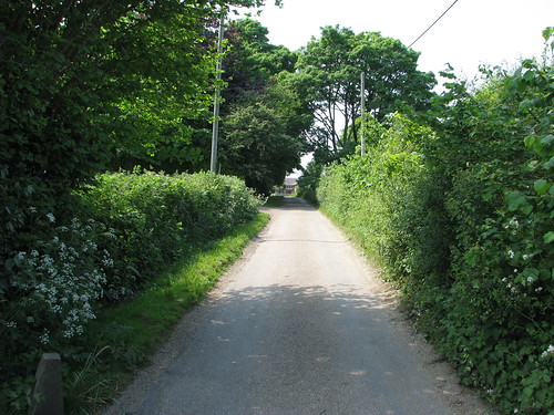 New Hall Lane