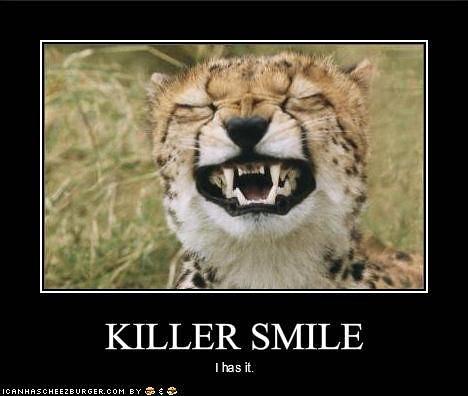 killer smile cat