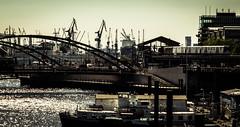 Hamburg - harbor city