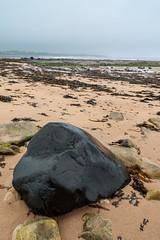 Big wet rock