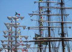 War of 1812 Sailabration