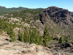 Gran Canaria - Roque Nublo Surroundings in the Spring
