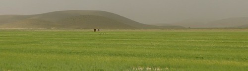 shiraz-tabriz-L1030671