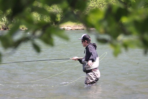 Eugene area summer steelhead report the mckenzie and for Fishing eugene oregon