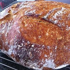 pastry, bread, baked goods, ciabatta, food, dish, cuisine,