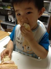 フランスパンを食べるとらちゃん (2012/7/8)