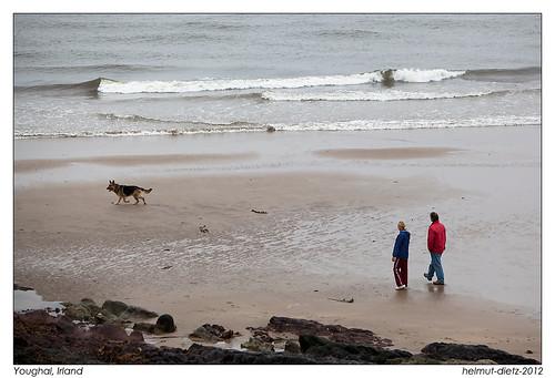Deutscher Schäferhund - Strand von Youghal, Irland