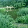 三宝寺池 正方形