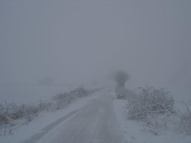 Bleak road