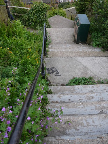 First appearance of Stewy British Adder Snake stencil, West Hill, Hastings by HastingsPeetArt