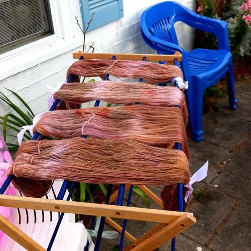 Beet-Dyed Yarn