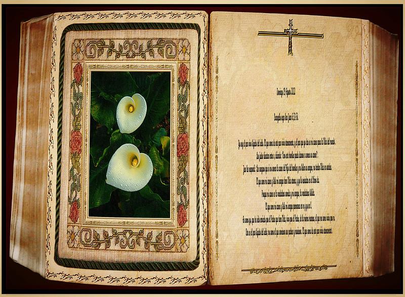 Evangelio según San Juan 6,51-58. Obra Pdre Cotallo