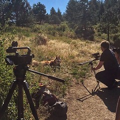 Life is tough when you look this good. We spent our morning shooting with @coloradountamed for their promo video and website! 📷