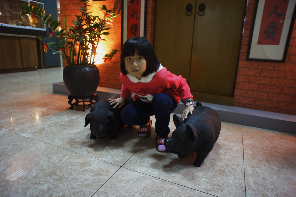 南投市香里活力豬品牌文化館 (3)