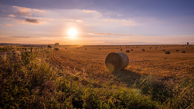 English countryside - Shrewton, United Kingdom - Landscape photography