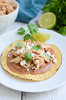sweet-and-spicy-turkey-tostadas-1-7