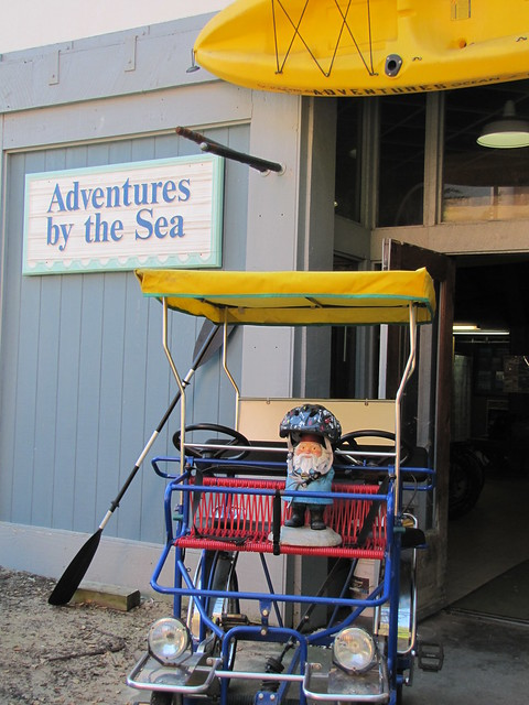 Surrey ride on Monterey's Coastal Recreation Trail -Adventures by the Sea