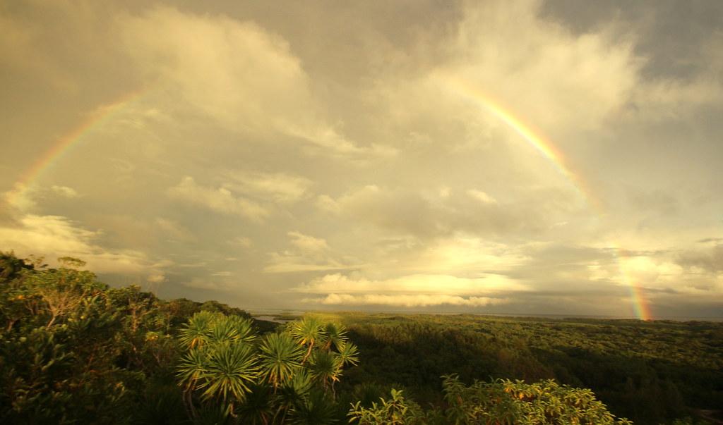 Jungle Rainbow Sunset Hey!