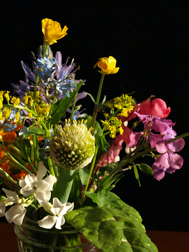 Spring garden bouquet: cultivated flowers, overwintered vegetables and weeds
