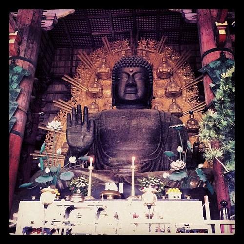 Y dentro del Tōdai-ji tenemos el Virocana Budha, el mas grande de Japón, 30metros #nara #japan