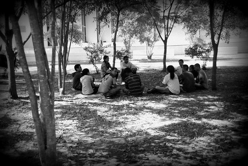 Study group meeting in the shade on a Sunday