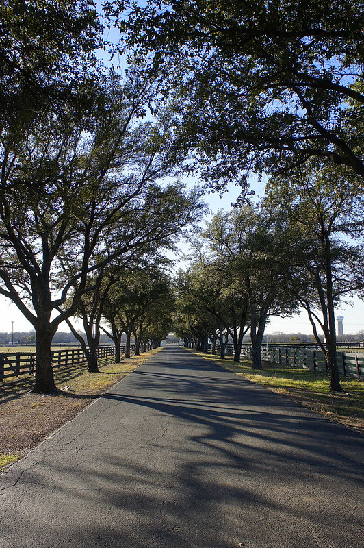 The Southfork Driveway - Dallas, TX