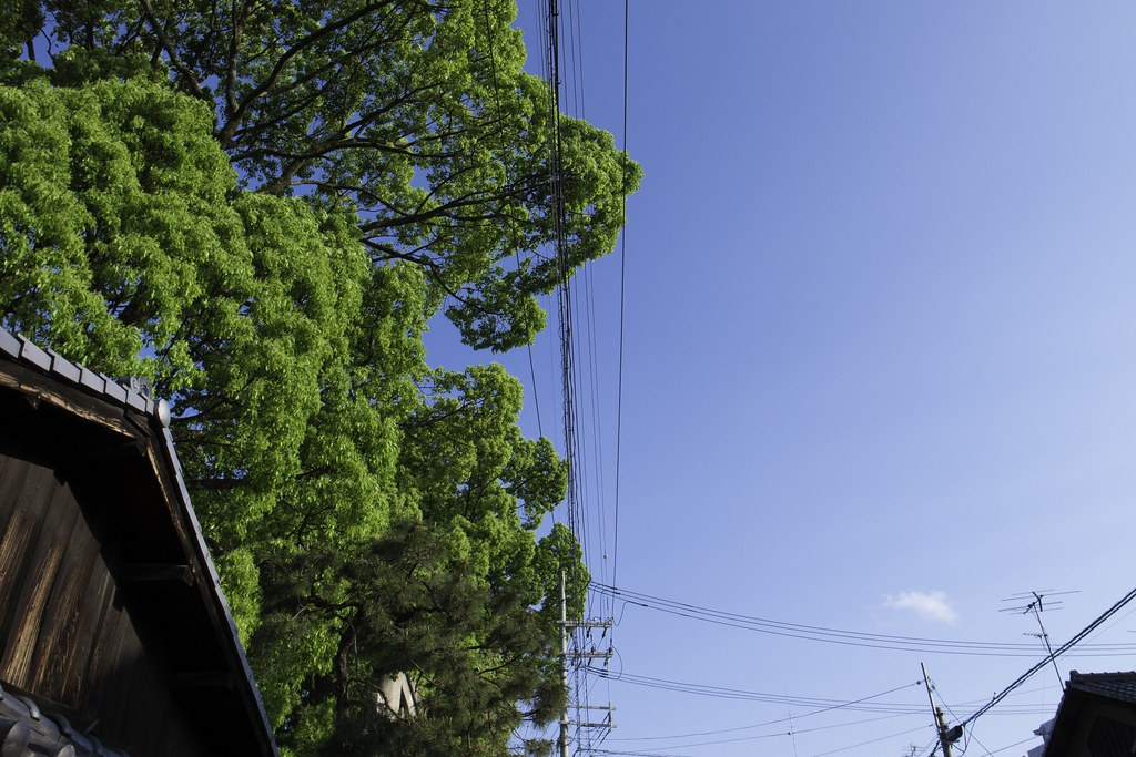 2012-05-12の空
