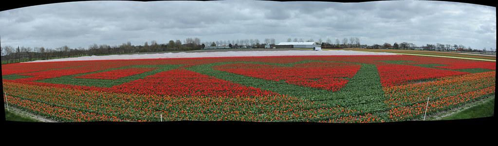 DSC_7744 Panorama